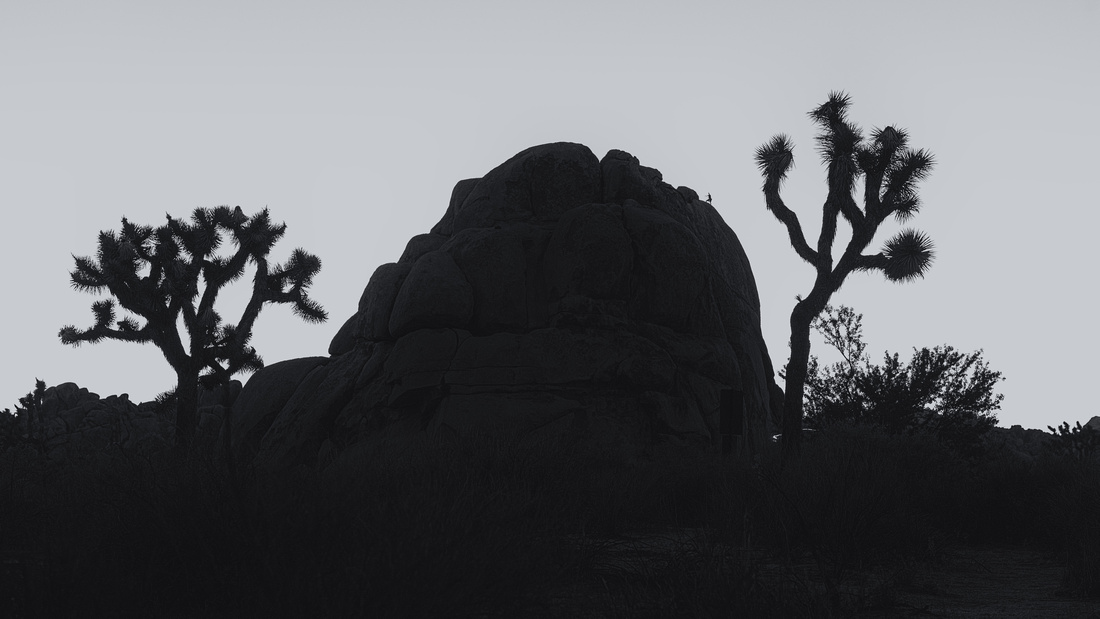 Climber in Joshua Tree
